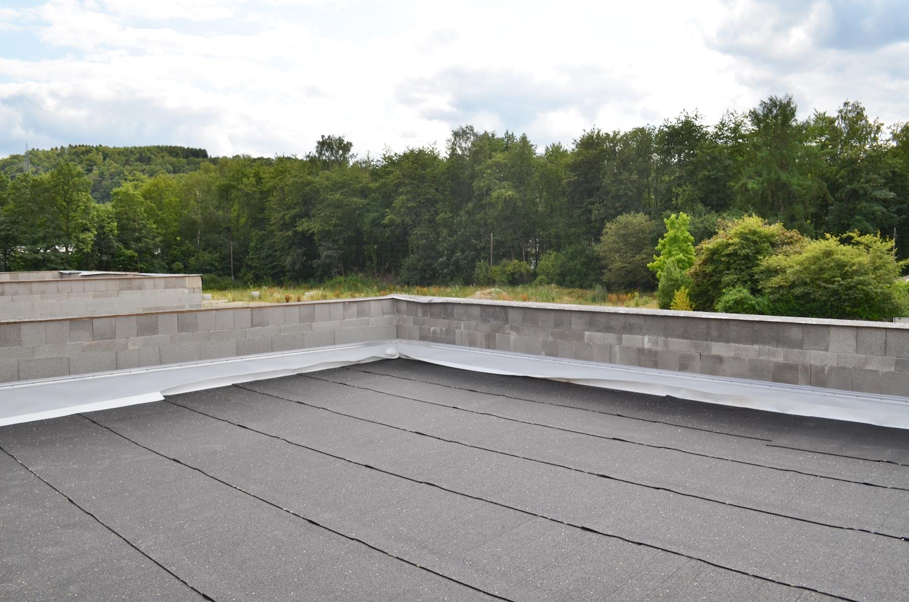 Flick Treuconsult-Lebenswert Deichwald-Dachterrasse Ausblick